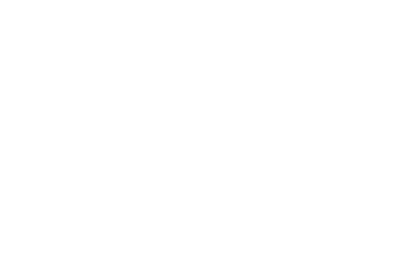 Fixation Video: Content | Production | Strategy